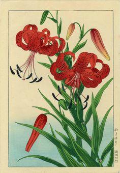 Tiger Lilly, Woodblock Print by Nishimura Hodo, 1930 -- via eBay
