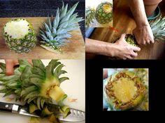 come coltivare l'ananas partendo dal ciuffo Begonia, Miniature Plants, Pineapple, Backyard, Fruit, Green, Flowers, Sud America, Usa