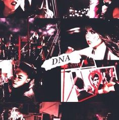 Little mix DNA
