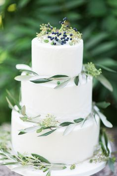Beatiful grecian inspired wedding cake. Olive branches, white, classic, fine art.  www.bowtieandbellephotography.co.uk