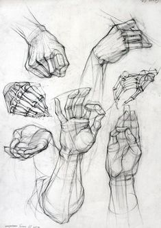 Anatomy Drawing Tutorial Old master drawings, construction, synthetic form and Glenn Vilppu. - Page 2 Hand Reference, Figure Drawing Reference, Anatomy Reference, Drawing Techniques, Drawing Tips, Drawing Sketches, Sketching, Sketches Of Hands, Drawing Ideas