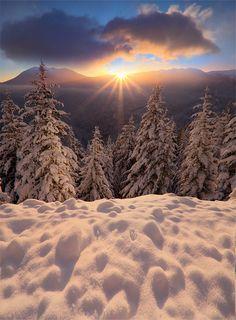 Winter Sunrise at Olympic National Park, Washington State. Winter Szenen, I Love Winter, Winter Magic, Winter Sunset, Winter Light, Foto Picture, Snow Scenes, All Nature, Winter Beauty