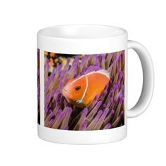 This coffee mug features a pair of Pink Skunk Clownfish nestled in a sea anemone on the Great Barrier Reef in the Coral Sea.