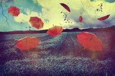 Umbrella Flying ;D