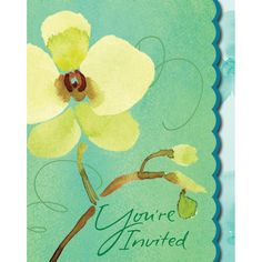 Cool Flora 4 x 5 Foldover Invitation/Case of 48 Tags: Cool Flora; Invitation; Floral Party; floral theme party tableware;froral design Invitation;Cool Flora Invitation; https://www.ktsupply.com/products/32786326819/Cool-Flora-4-x-5-Foldover-InvitationCase-of-48.html