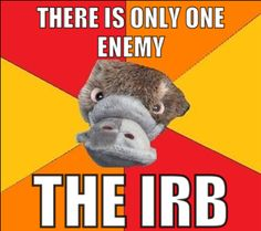 IRB stands for institutional review board, and they're terrifying, especially when you have to ask for money...