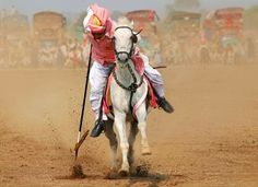 Man On Horse - Punjab Culture Punjab Culture, Culture Of Pakistan, Man On Horse, Show Cattle, Tent Pegs, Color Of Life, High Quality Images, Camel, Places To Visit