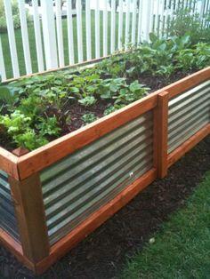Galvanized Steel Raised Bed Garden Plans is listed in our Galvanized Steel Raised Bed Garden Plans