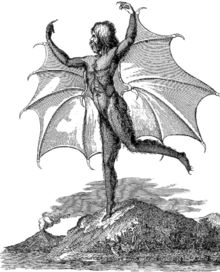 Portrait of a man-bat (Vespertilio-homo), from an edition of the moon series published in Naples.