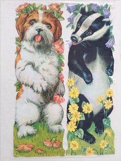 Große Glanzbilder im A4 Format MLP1517 Hund und Dachs - Made in England. Originale aus den 80er Jahren.