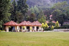 Just Rs 8000 book Ramganga resort for cpls. #corbett #hotels