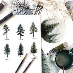 Practicing different pine and fir trees so I can create a variety of trees while painting landscapes. Watercolor Trees, Watercolor Landscape, Landscape Paintings, Watercolor Paintings, Paintings Of Trees, Gouache Painting, Painting & Drawing, Painting Inspiration, Art Inspo