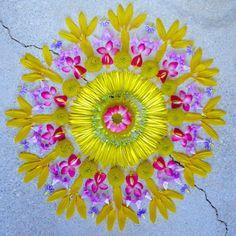 """Kathy Klein - flower mandalas (from Fubiz) """"L'artiste Kathy Klein aime créer des jolies compositions florales au sol avec ses deux mains vertes."""""""