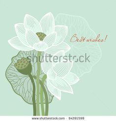 Greeting card with lotus - stock vector