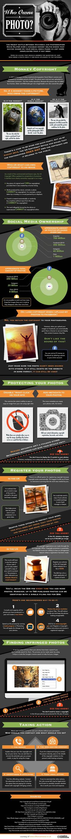 who_owns_a_photo_infographic