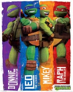 Turtles (Profiles) Posters at AllPosters.com