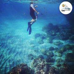 #Photo @davidgurdill #ametllademar #ametllamar #terresdelebre #tarragona #catalunya #catalogne #cataluña #catalonia #pesca #fishing #pêche #platja #playa #plage #beach #estiu #verano #été #summer #sun #vacances #vacaciones #holiday #traveling #viajes #travel #visit #eatheword #vamosdeviaje #voyage #escapadas #experiences #traveller #food #gastronomia #gastronomy #happyholidays #mediterrani #mediterraneo #mediterranean #visiting #vacation #trip #tourism #tourist #reservadelabiosfera