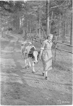 Finnish Women, Vintage Housewife, Vintage Mom, My Land, Historian, Cozy House, Ww2, Denmark, Norway