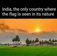 Happy Independence Day everyone. Together ne. True Interesting Facts, Some Amazing Facts, Interesting Facts About World, Intresting Facts, Unbelievable Facts, General Knowledge Facts, Knowledge Quotes, Gernal Knowledge, Wow Facts
