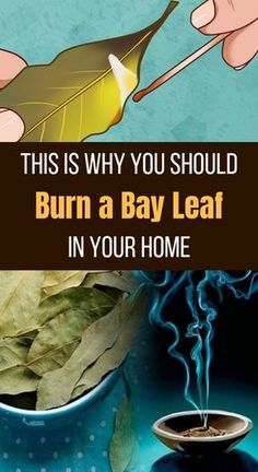 The inhalation of the smell provides various health benefits. #bayleaves