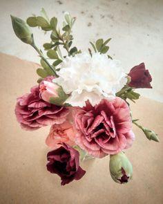Sol Mendoza Fotografía #solmendozafotografia #flower #bouquet #carnation