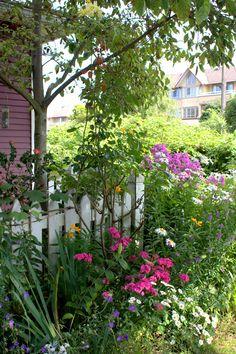 Vancouver city garden and exterior