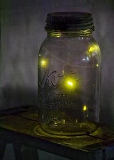 40 best Fireflies Forever images on Pinterest   Fireflies  Glow     Fireflies in a canning jar