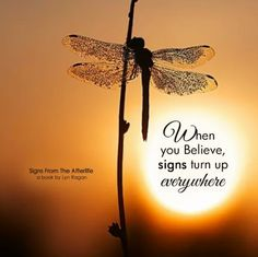 dragonfly When you believe, signs turn up everywhere Great Quotes, Quotes To Live By, Me Quotes, Inspirational Quotes, Meaningful Quotes, Strong Quotes, Motivational, Dragonfly Quotes, Dragonfly Art