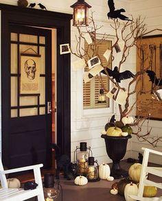 love the ravens!!....from junkgardengirl.blogspot.com
