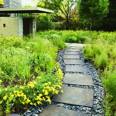 Grasses and shale    Fractured shale fills gaps between concrete pavers in Dennis and Susan Hourany's yard in Alamo, CA.     Yarrow and grasses soften the path's edges.    Design: Mathew Henning and Heather Anderson Oakland (510/531-3095)