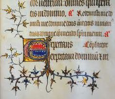 Medieval illuminated manuscripts - Google zoeken