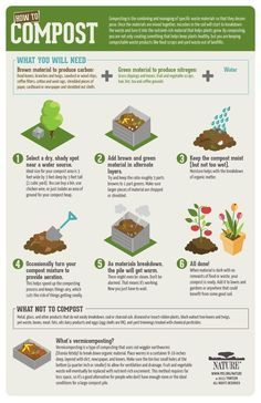 How-To Compost. An infographic on where and how to compost, what to compost and…