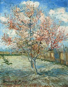 Peach Tree in Bloom - Vincent Van Gogh. Beautiful. So many other paintings on this link to be enjoyed by him as well!