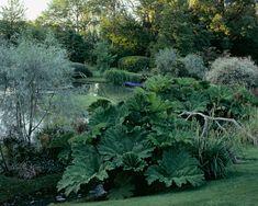 Jardin d'O | Jardin | Camille Muller paysagiste