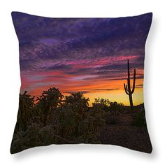 "A Rainbow of a Desert Sky  Throw Pillow 14"" x 14"""