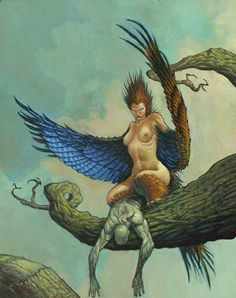 Unknown Artist - Harpy. Tags: harpies, mythological creatures,,
