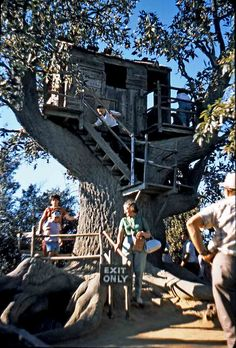 Tom Sawyer Island Treehouse, August 1961. Before the Matterhorn was constructed, the treehouse on Tom Sawyer Island was the highest point in Disneyland. | Gorillas Don't Blog