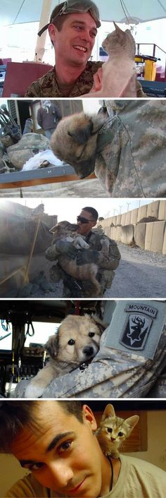 Military men and women deployed overseas often fall in love with the furry friends they meet, and sometimes they're even able to bring their companions back stateside. These animals all kept our servicemen and women company while they were miles from home.
