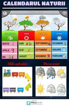 calendarul-naturii-jinga-petre-vasilica-copy