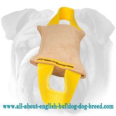 #Leather #Dog #Tug #Toy with 2 Handles for #English #Bulldog Breed $6.30 | www.all-about-english-bulldog-dog-breed.com