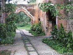 Haciendas of Yucatan Mexico: near Merida: History & photos