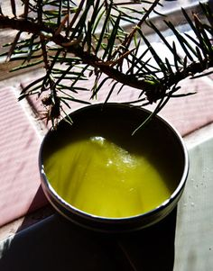 Evergreen Balm... excellent at stimulating healing and relieving pain in part because of the way in which the volatile oils increase local circulation. This warming power is especially effective for treating cold symptoms which may manifest as stiff, achy muscles often characterized by dull, chronic pain.  Additionally, stronger scented conifers can be useful as a chest rub during colds with sinus congestion or chronic coughs.