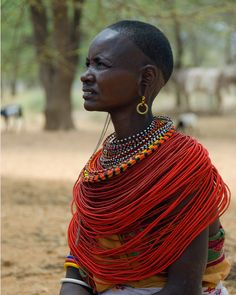 The Maasai Necklace African Tribes, African Diaspora, African Women, African Art, African Fashion, African Style, Masai Tribe, Maasai People, African Traditions