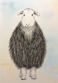 Herdwick Sheep by artist Becca Fielding Watercolor Portraits, Watercolor Paintings, Abstract Animal Art, Sheep Drawing, Sheep Paintings, Doodle, Sheep Crafts, Sheep Art, Sketchbook Inspiration