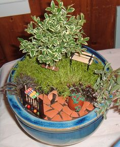 Miniature Garden by Colby and Madison.