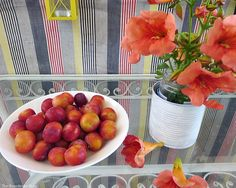 fruits and flowers on the table. A Tour of the Balcony, Part 1 theboondocksblog.com