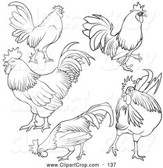 Clip Art Vector of a Digital Set of Rooster Outlines