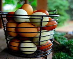 Tis the season for chicken lovers everywhere to resist the urge to purchasejust a few more chicks.I am telling you, once you start raisingchickens for eggs, it becomes an obsession. You won't be…