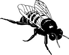 Please enjoy our collection of 20 free bee clip art images from the public domain. We've got bumble bees, honey bees, hives, honey combs, and honey jars so there should be something here for everyone. Honey Bee Drawing, Bee Outline, Bee Silhouette, Bee Clipart, Insect Wings, Black And White Illustration, Vinyl Wall Art, Free Pictures, Art Images