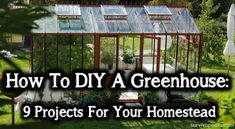 Todays article is about the basics of DIY-ing your own greenhouse the whole 9 yards in DIY for the self-conscious prepper. Build A Greenhouse, Greenhouse Growing, Greenhouse Ideas, Greenhouse Wedding, Plant Watering System, Wooden Greenhouses, Rainwater Harvesting, Building A Shed, Plant Needs